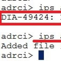 DIA-49424