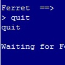 FerretExited