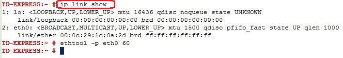 IP Link Show